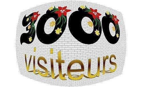 Merci à vous tous ! 3 000 visites !