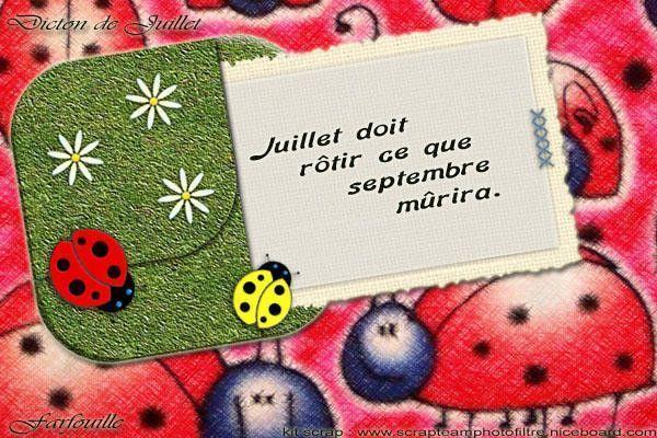Les Dictons du mois de JUILLET !