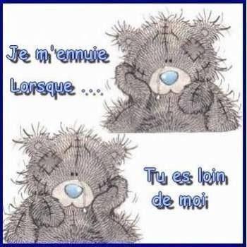 Taddy Teddy - message -