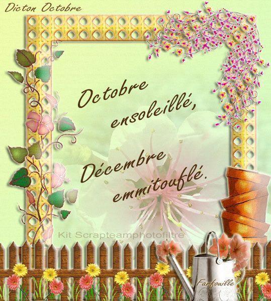 Les Dictons du mois de OCTOBRE !