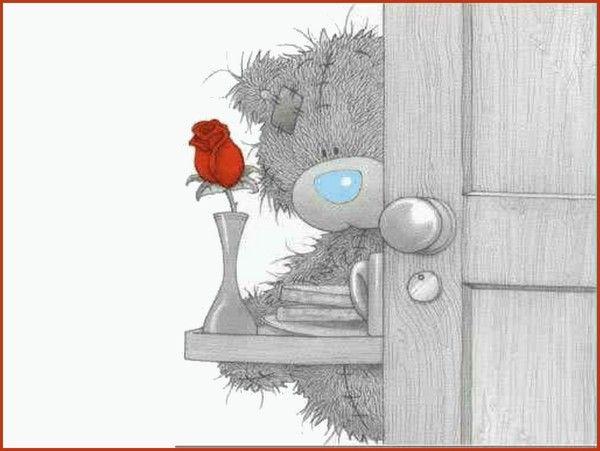 Taddy Teddy - Amoureux -
